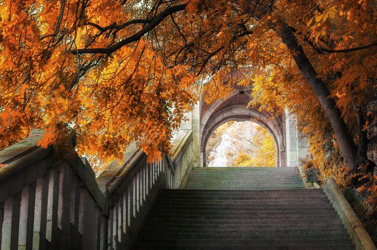 Autumn colors by Laszlo Gal on 500px