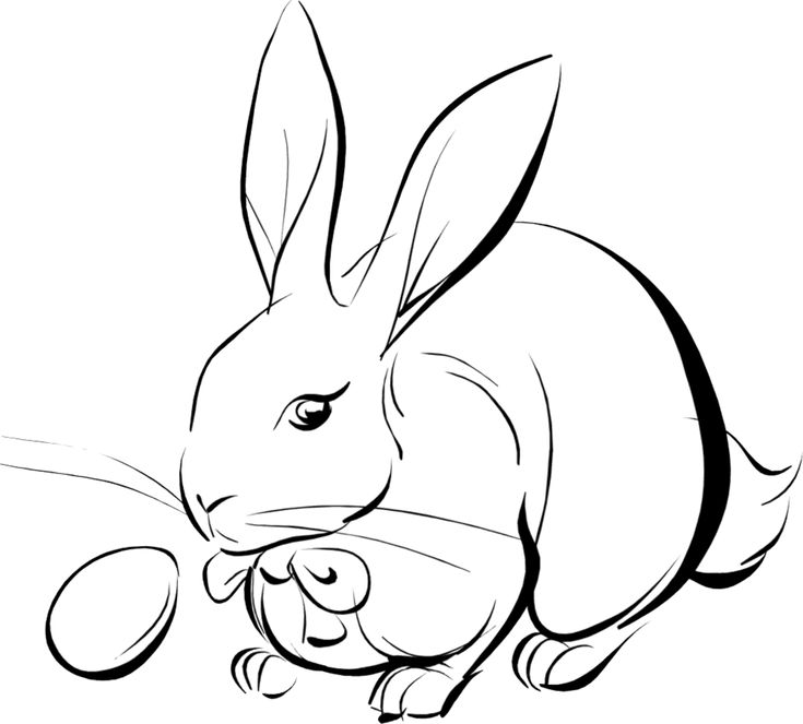 10 Mewarnai Gambar Kelinci   bonikids