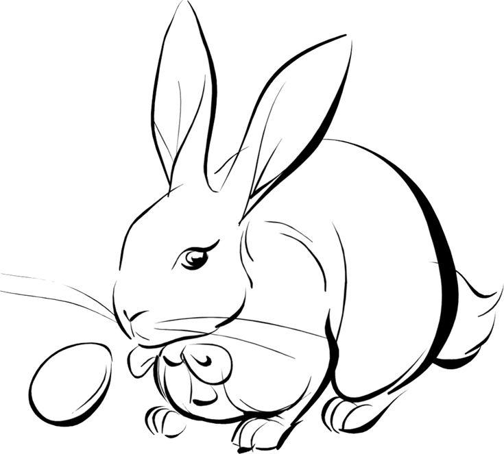 10 Mewarnai Gambar Kelinci