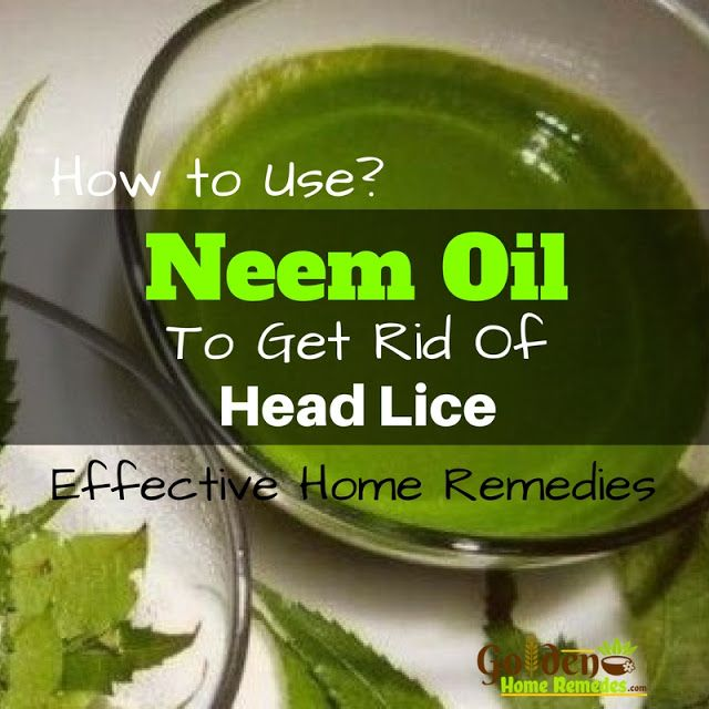 the 25 best neem oil for hair ideas on pinterest neem oil acne face chart and olive oil for face. Black Bedroom Furniture Sets. Home Design Ideas