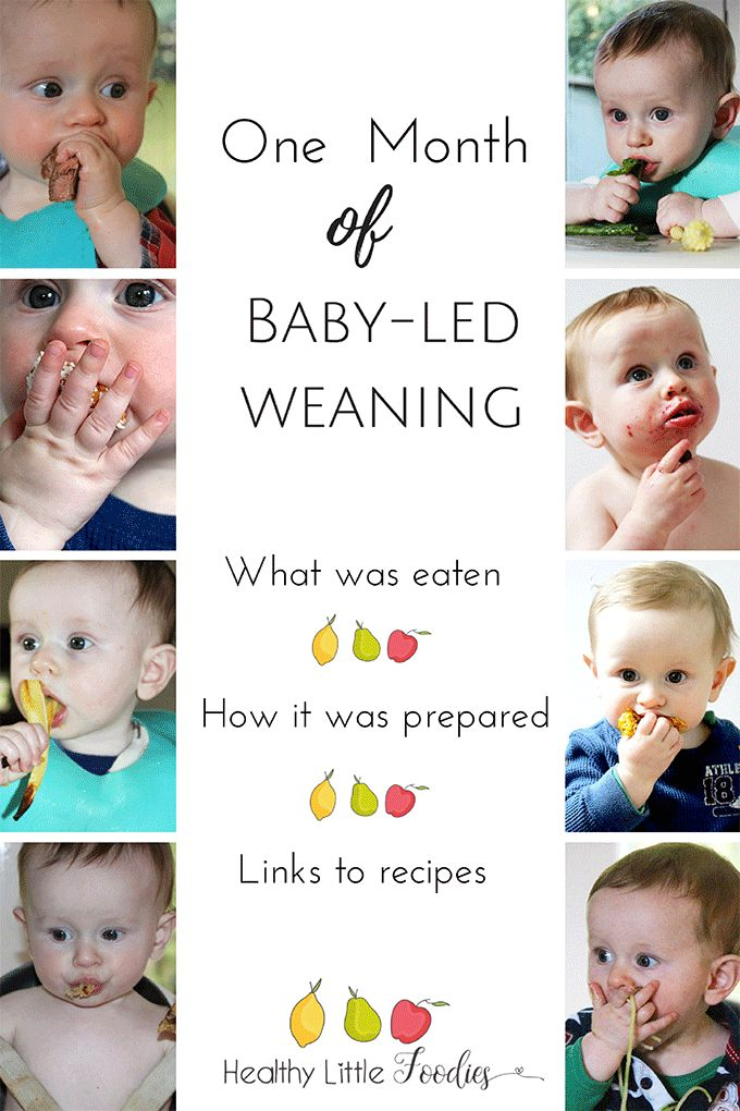 A list of foods that my son ate during his first month of baby-led weaning. What he ate, how he ate it and links to any recipes.