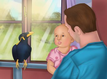 Bird Breeds - how to articles from wikiHow