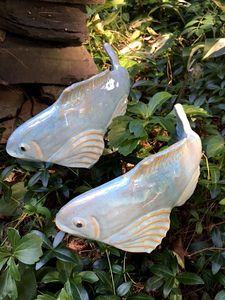 Sky Blue Fishies