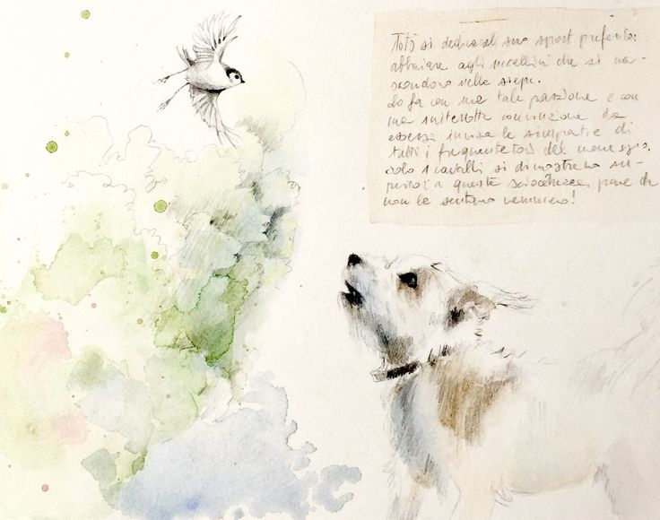 #acquerello#watercolor#natural sketch#maria sanfilippo#illustration#dog anb bird#