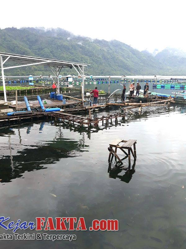 Kejarfakta.com-Lambar- Fenomena alam yang berupa semburan belerang dari dasar danau, yang terjadi di Danau Ranau Kecamatan Lumbok Semi...