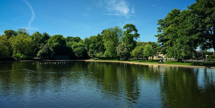 Celebrate National Picnic Week with our list of your fav places to enjoy a picnic #inGlasgow!