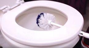 Sie klemmt ihre Toilettenbürste 10 Minuten unter den Toilettensitz – der Grund ist genial!
