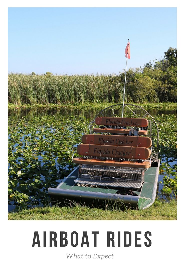 What To Expect On An Airboat Ride Airboat Rides Vero