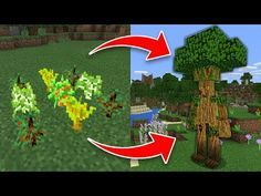 10 SECRET Things You Can Make in Minecraft! (Pocket Edition, PS3/4, Xbox, PC) - YouTube