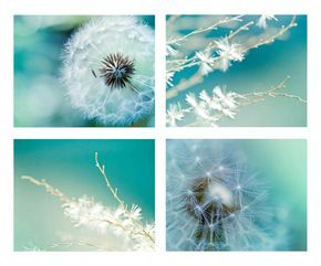 Dandelion photography print set 8x10 8x12 botanical Fine art dreamy macro nature green art print blue teal wall art summer spring