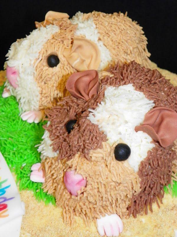 Guinea Pig Birthday Cake cakepins.com