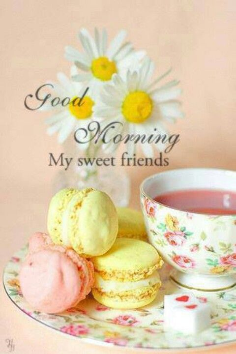 Good morning my sweet friends. <3