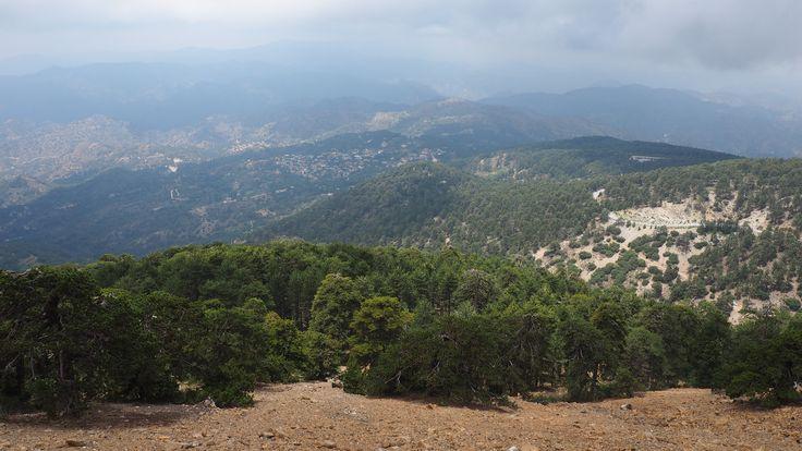 #cyprus #troodos #troodos_trail #кипр_горы #Троодос_Кипр #пеший_поход #пешком_по_Кипру #фотографии_Кипр #отдых_на_Кипре