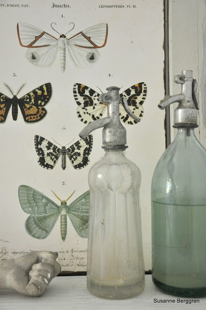 Natural curiosities is trending and we love adding it's elements to our interiors. Like items found www.linenandboxwoods.com