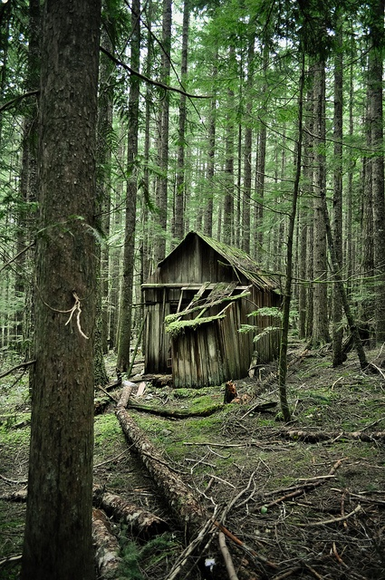 17 Best Images About Historic Log Homes On Pinterest