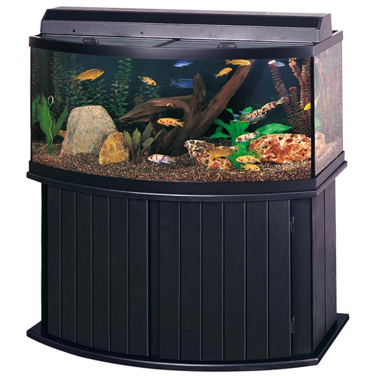 17 best ideas about 300 gallon aquarium on pinterest for 30 gallon long fish tank