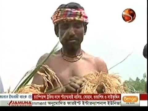 Bangla TV BD Newspapers Morning 20 April 2017 Bangladesh Live TV News Today