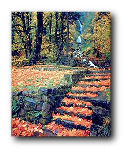 Extremely beautiful! This water fall with a fallen autumn leaves on every steps scenery poster will add deep color and an infusion of nature's tranquility to any room in your home. You'll enjoy the scene of natural beauty with this innovative nature art print poster. Perfect for any nature lover. Ensures quality product with wonderful color accuracy.