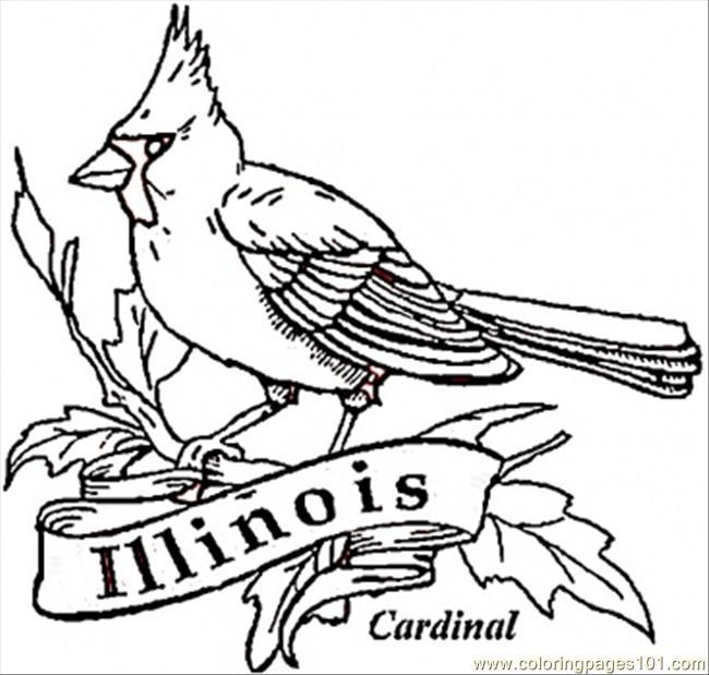 65 best cardinal bird cakes images on Pinterest Bird cakes, Petit - copy coloring pages birds in winter