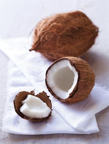 Coconut/Klapper