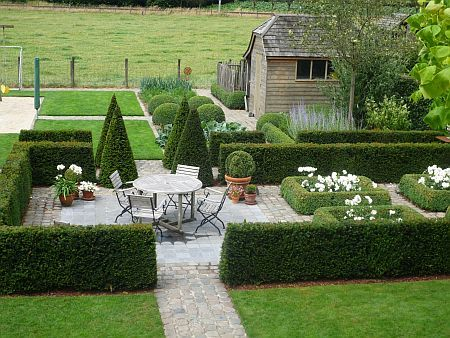 1000 ideas about low maintenance plants on pinterest for Low maintenance bushes for front of house