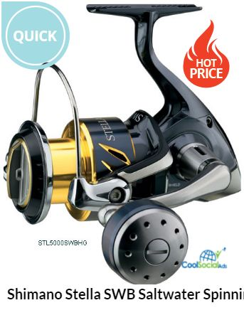 Shimano Stella SWB Saltwater Spinning Reels for more details visit http://coolsocialads.com/shimano-stella-swb-saltwater-spinning-reels-42079