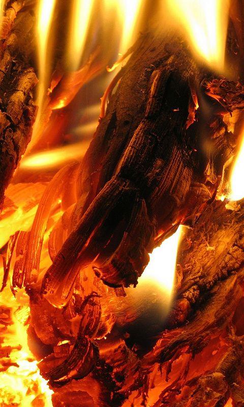 уголь, пламя, Огонь, костер, жар