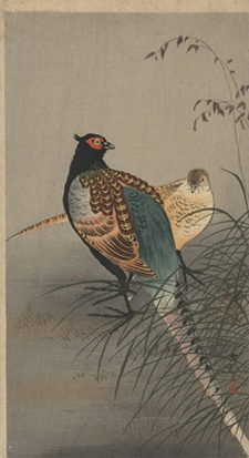 Ohara Koson (1877-1945): Two Pheasants