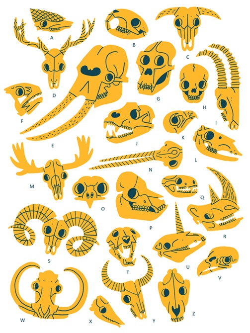 Owen Davey Skull Alphabet Maps Charts Diagrams In 2018
