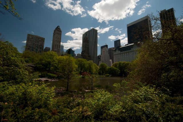 First impressions – an Englishman in New York