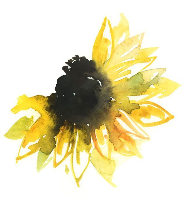 nice Watercolor tattoo - Sunflower. Watercolor tattoo...