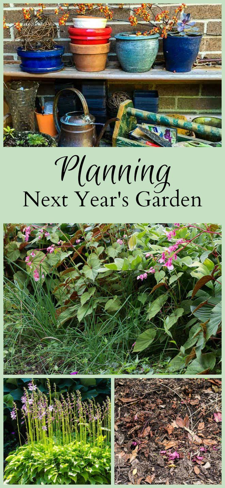 Planning Next Year S Garden Is Something You May Want To Consider