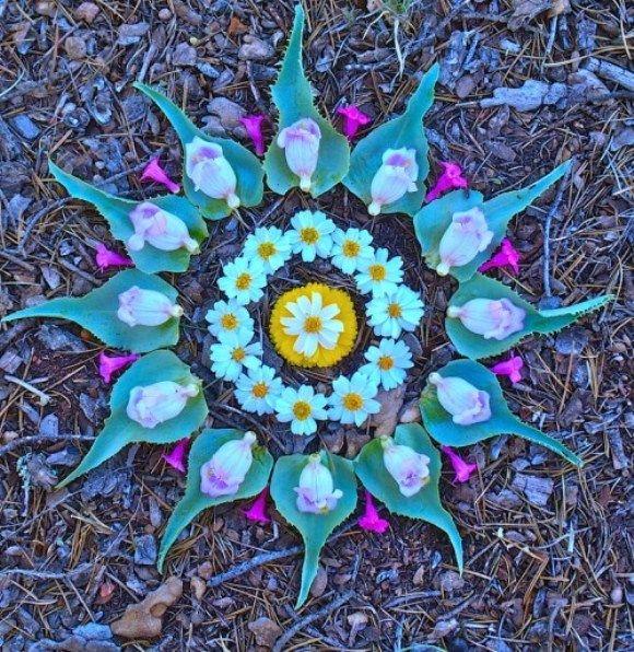 Flower Mandalas by Kathy Klein http://blog.freepeople.com/2012/06/flower-mandalas-kathy-klein/