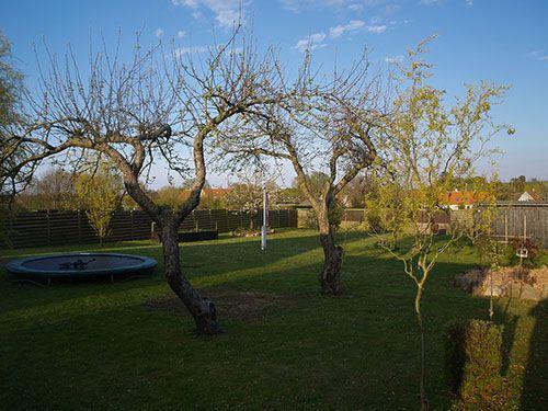 Fritids hus til salg på Samsø med stor flot have
