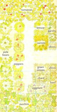 Vegetable Garden Planner, Vegetable Gardening Tips and Companion Gardening