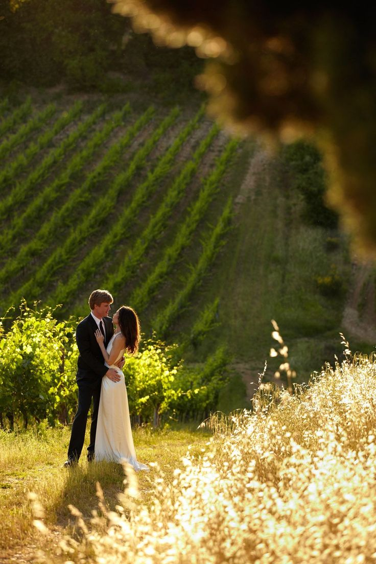 wedding in tuscany, vineyard photo