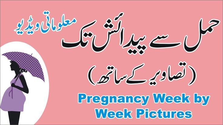 Pregnancy Week by Week Pictures | Pregnancy Month by Month https://www.youtube.com/watch?v=H7Ac83l04HU
