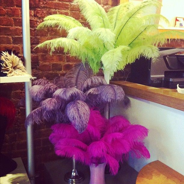Fluffy Flower Centerpiece Kit : Ostrich feather centerpieces thefeatherplace holiday