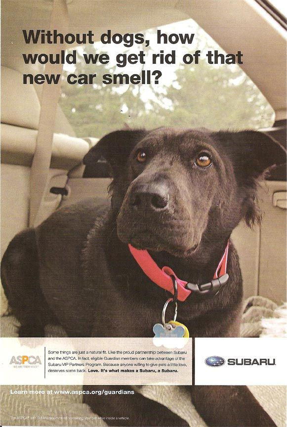Subaru advertisement supporting ASPCA: without dogs how would we get rid of the new car smell