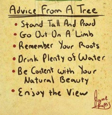 thee tree advise wisely.
