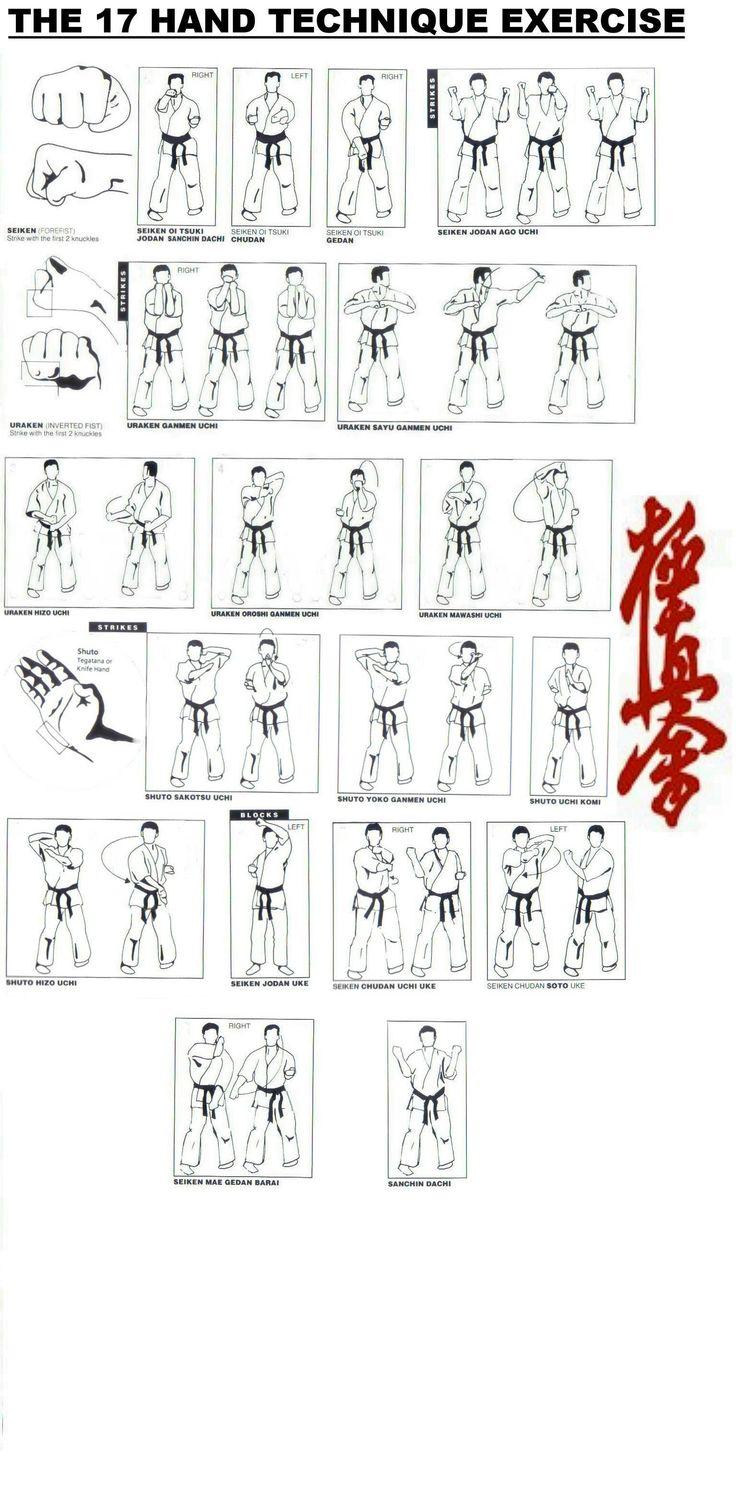 25  best ideas about kyokushin on pinterest