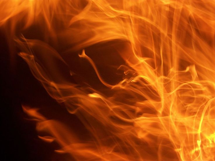 17 Best Images About Heat Lamp Fires On Pinterest Chicken Local News And Pets
