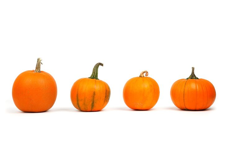 Fall is here and we're loving #pumpkinflavoredeverything! What do you love about Fall?