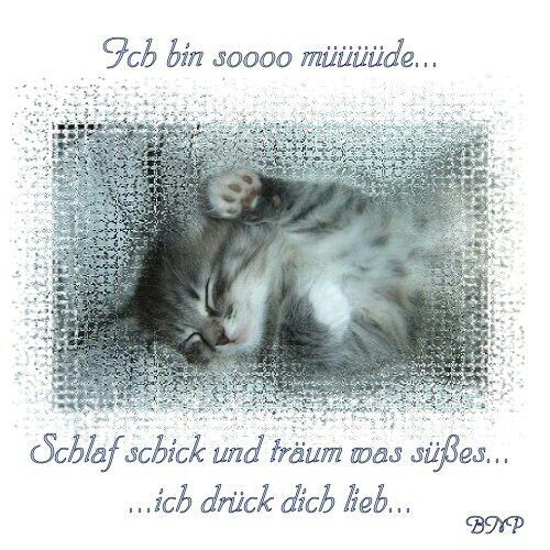Hey Good Morning In German : Best images about guten abend feierabend on pinterest