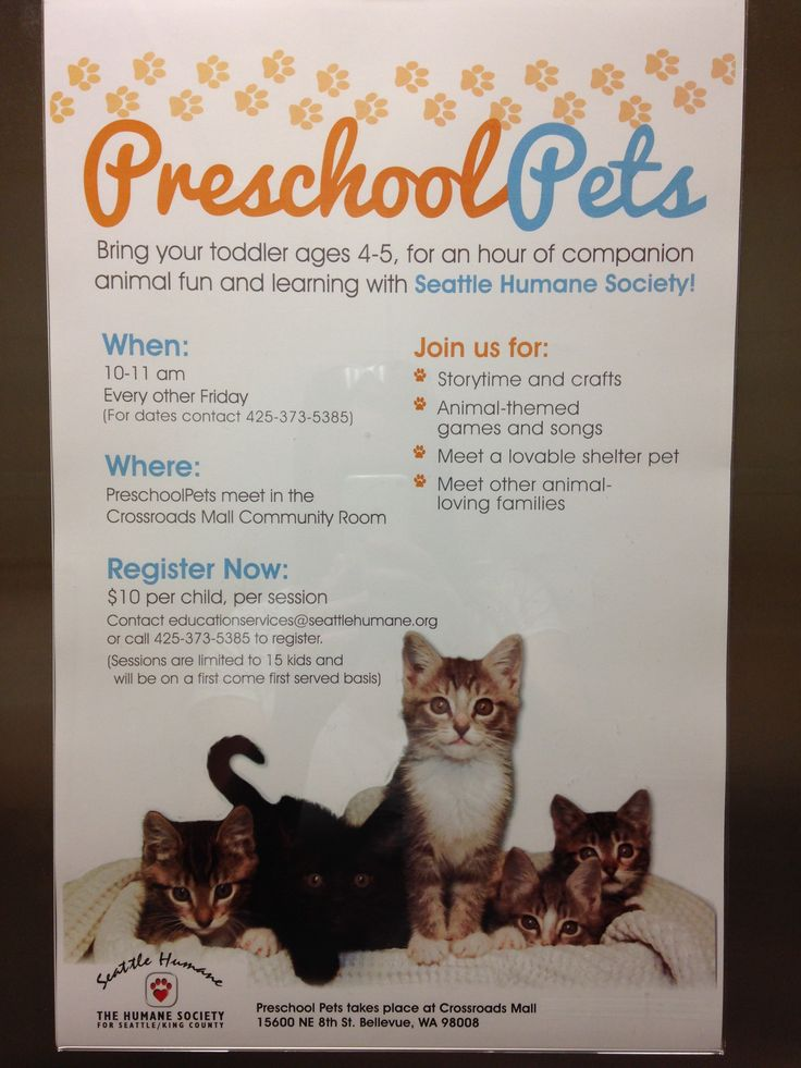 Crossroads Mall (Bellevue, near Seattle) has Preschool Pets time :) For an hour every other Friday animals from the Seattle Humane Society come for PLAYTIME