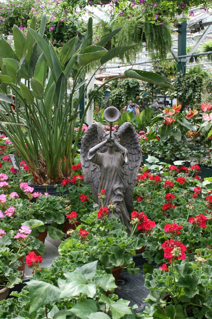 46 Best Images About Garden Center Displays On Pinterest