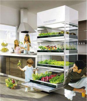 O cultivo de alimentos dentro de casa ganha uma variedade de possibilidades com a alta tecnologia da nova horta hidropônica automatizada. Conheça essa e outras soluções em: www.ecoeficientes.com.br