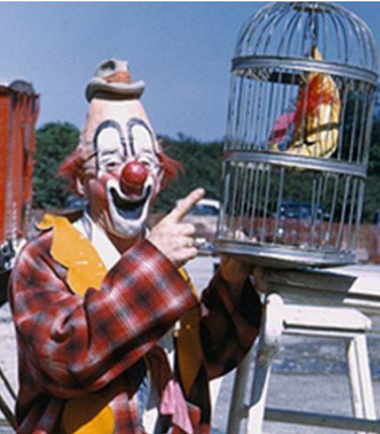 The Auguste Clown Type is the troublemaker!
