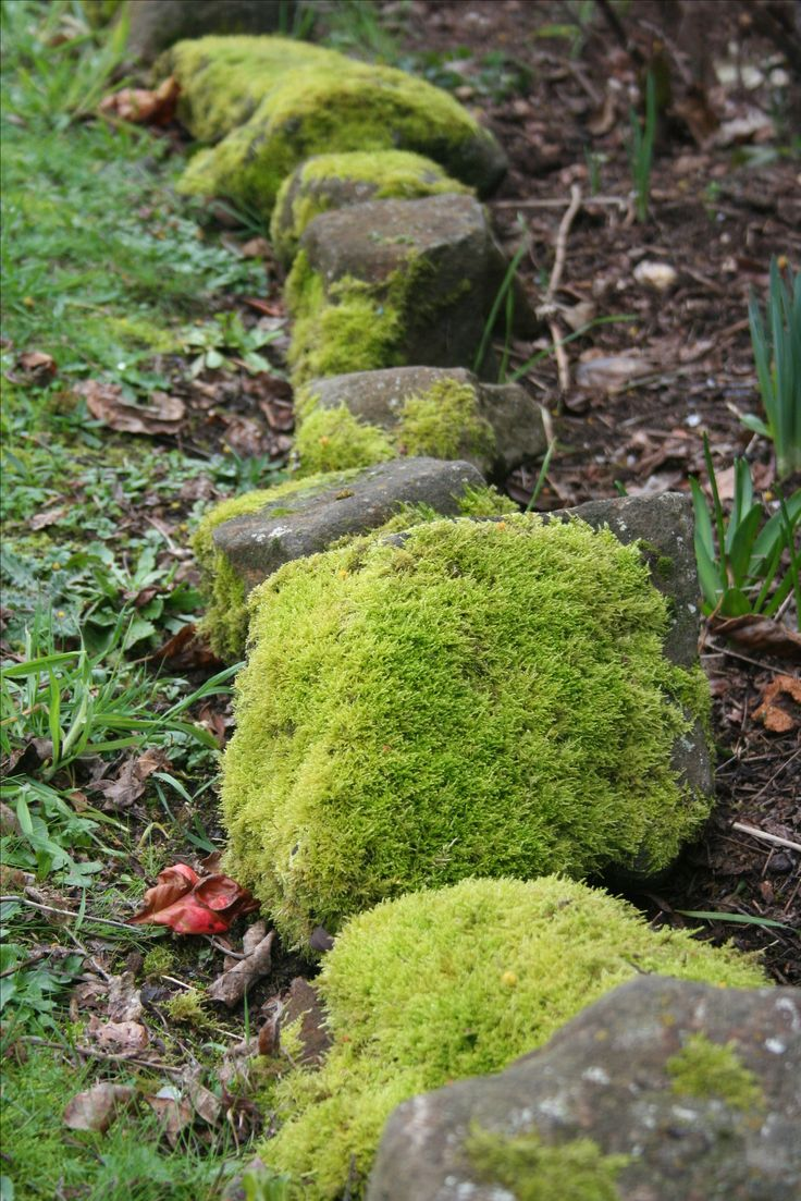 I just love moss covered rocks. www.theoldfrenchdoors.blogspot.com