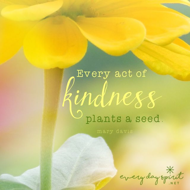 Be kind. xo See the app of cute and inspiring wallpapers at ~ www.everydayspirit.net xo #kindness #garden #yellow #kind
